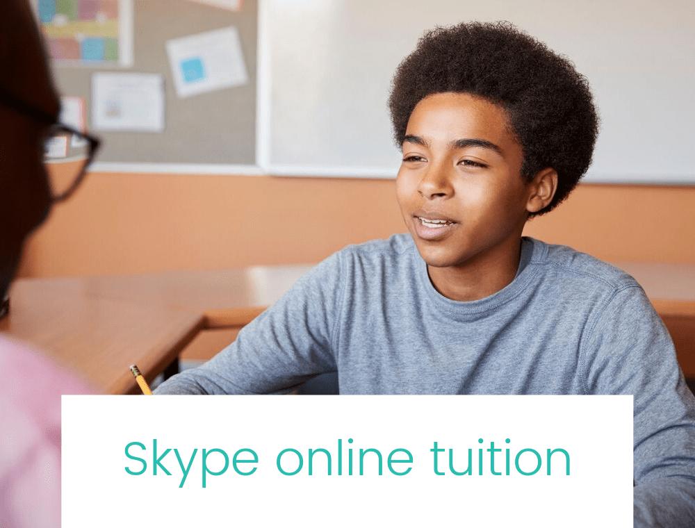 Image minimised Skype online tuition